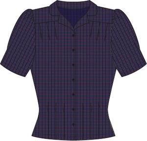 the Hollywood Boulevard blouse. navy plaid